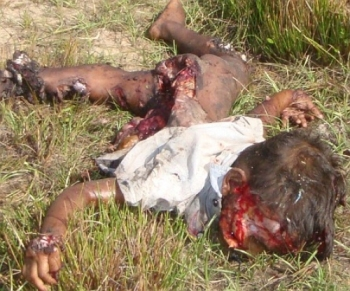 A butchered Sri Lankan child